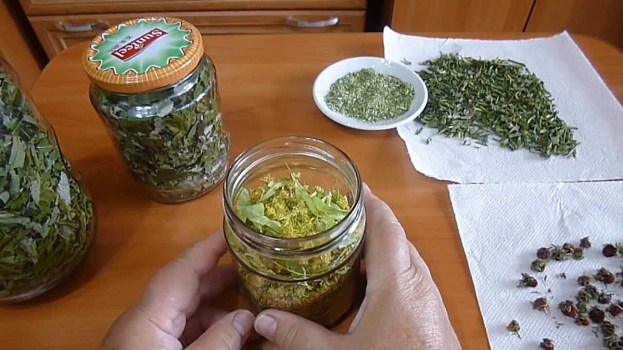 Как сушить боярышник в домашних условиях на зиму? чем полезен и когда собирать плоды для сушки? русский фермер