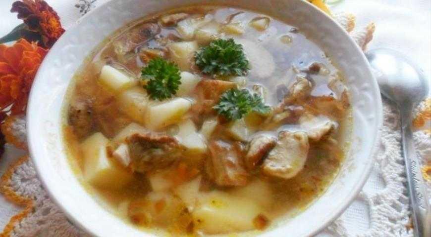 Грибной суп из замороженных грибов, рецепты простых вкусных супов