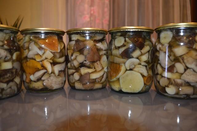 Как жарить подосиновики: рецепты приготовления очень вкусных грибов