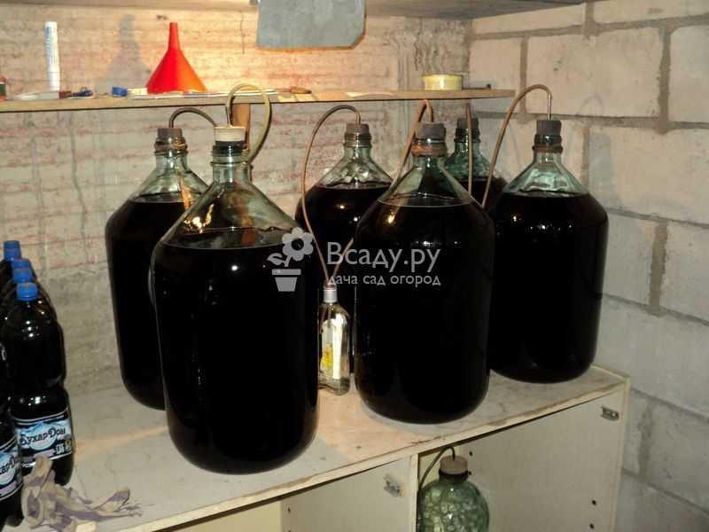 Вино из варенья: гордость садовода, ужас винодела