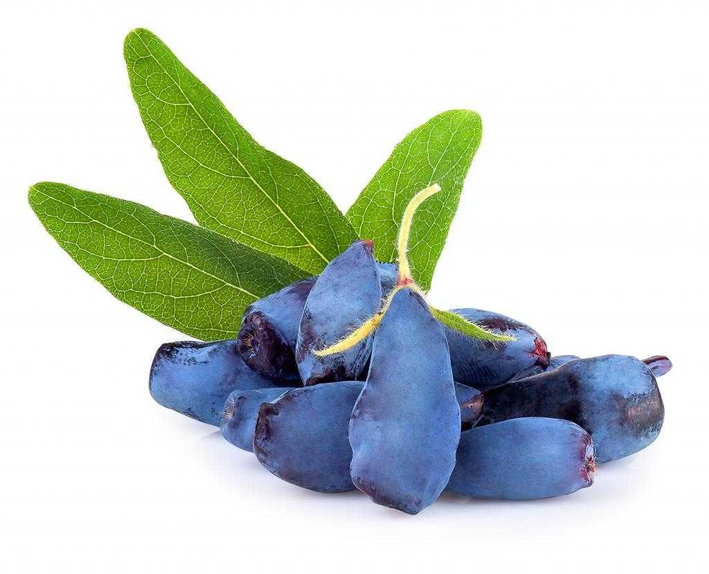 Варенье из черноплодки со сливой