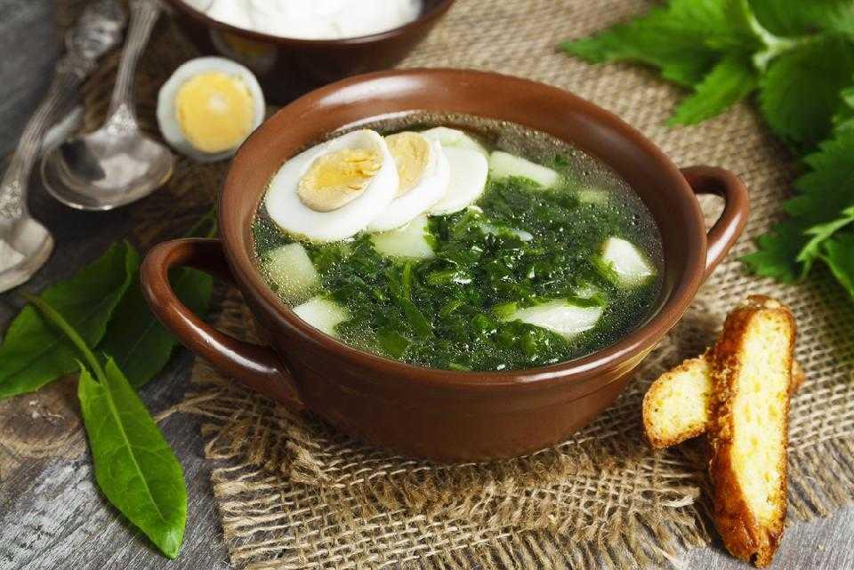 Зеленый борщ : с щавелем, я яйцом, с мясом, на зиму, без щавеля