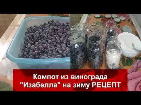 Виноградные компоты: подробные рецепты на 3-литровую банку