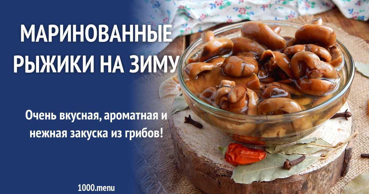 Как солить рыжики на зиму в банках - лучшие кулинарные рецепты