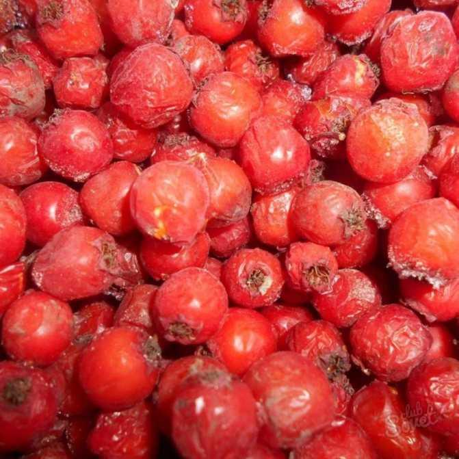 Варенье из боярышника: рецепты приготовления с косточками, польза ягод, сделать сироп, джем в домашних условиях, удалить