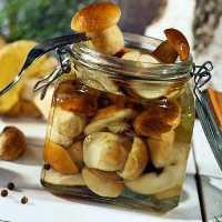 Засолка грибов на зиму