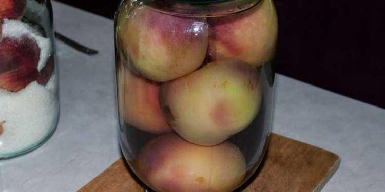 Простые рецепты компота из персиков и нектаринов с косточками и без на зиму, со стерилизацией и без