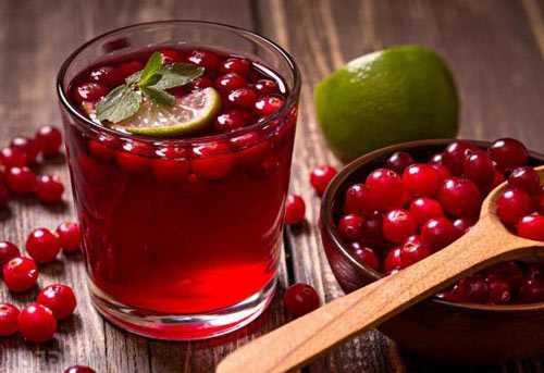 Вино из брусники: 6 простых рецептов приготовления в домашних условиях