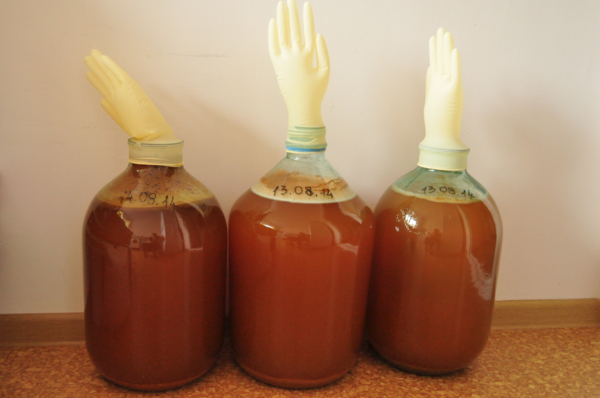 Вино из яблок по рецептам из жмыха, сока, варенья и спелых фруктов