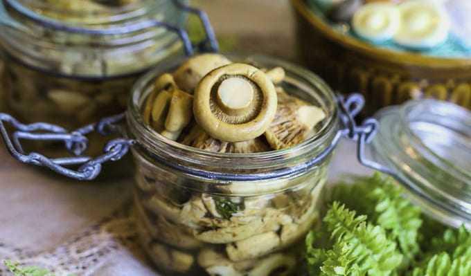 Как солить белые грибы на зиму: простые рецепты домашних заготовок