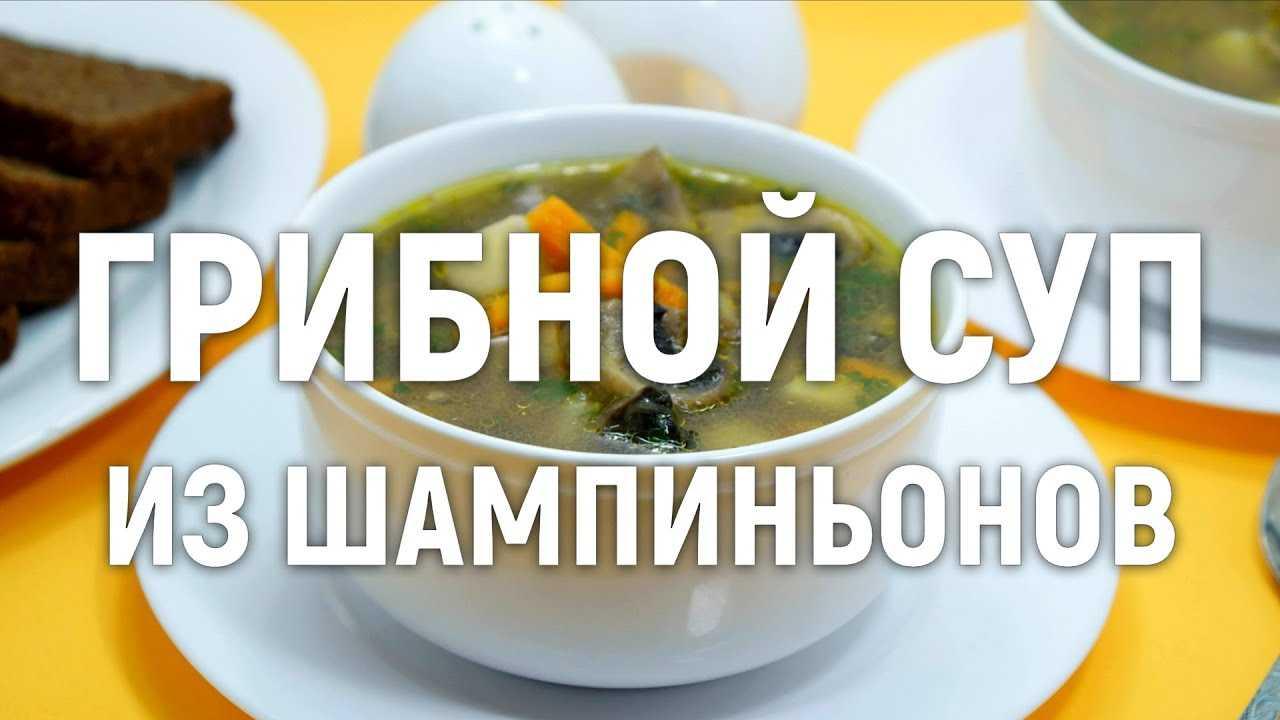 Куриный суп с шампиньонами - вкусное полноценное  меню: рецепт с фото и видео