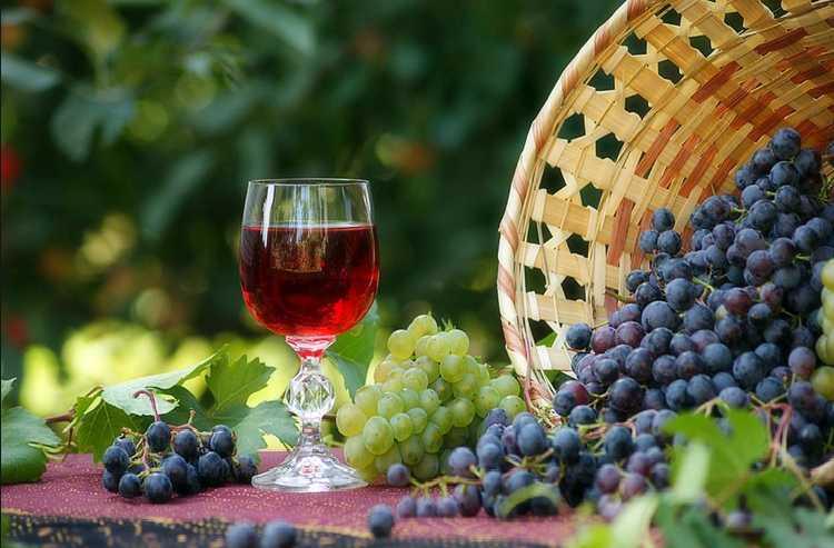 Вино из смородины - 75 фото и видео инструкция по приготовлению вина