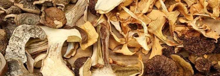 Как хранить сушёные грибы в домашних условиях: советы и рекомендации