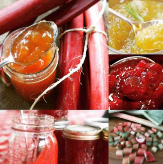 Как варить вкусное повидло из ранетки на зиму: рецепты яблочных заготовок