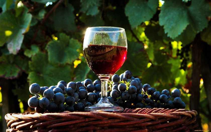 Технология приготовления вина из сока