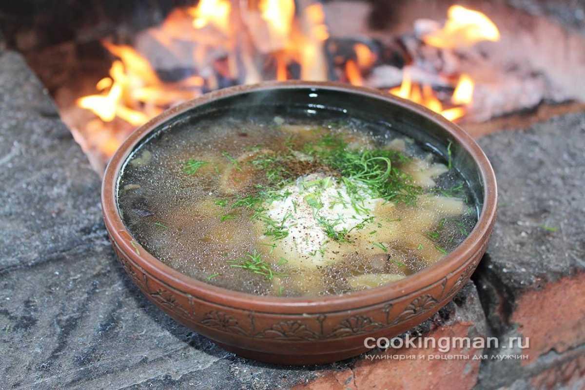 Грибной суп из подберезовиков: 6 классических рецептов супа из свежих грибов