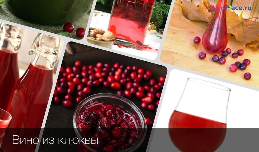 Вино из брусники в домашних условиях: простые рецепты приготовления