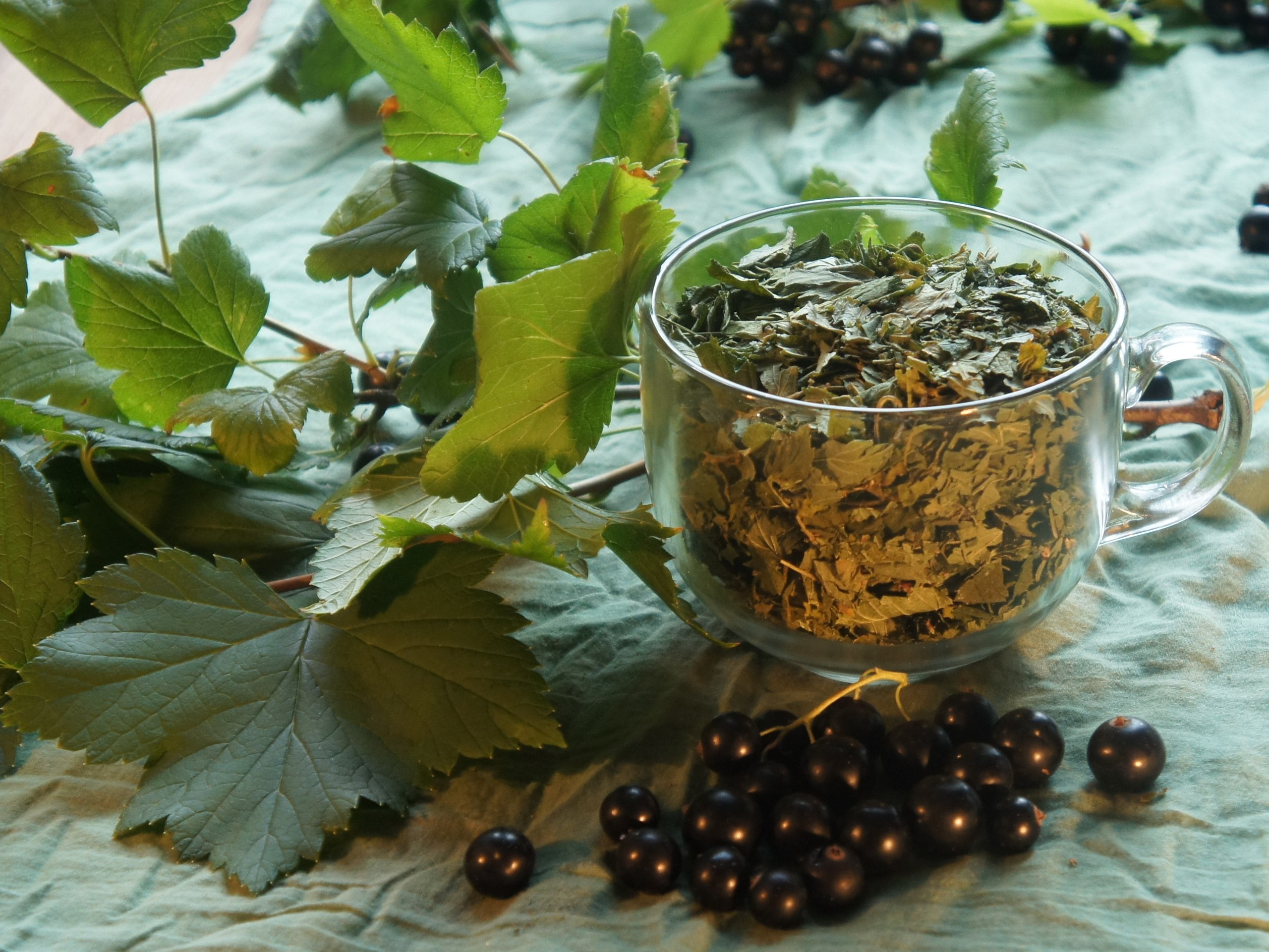 Сушка вишни в электросушилке, заготовка овощей