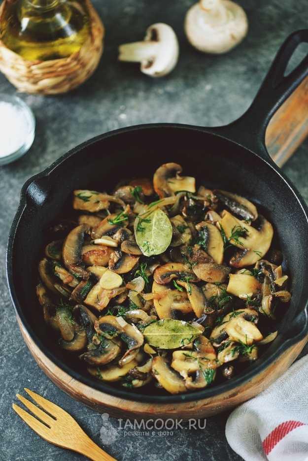 Куриное филе с грибами в сливочном соусе: топ-3 вкусных рецепта