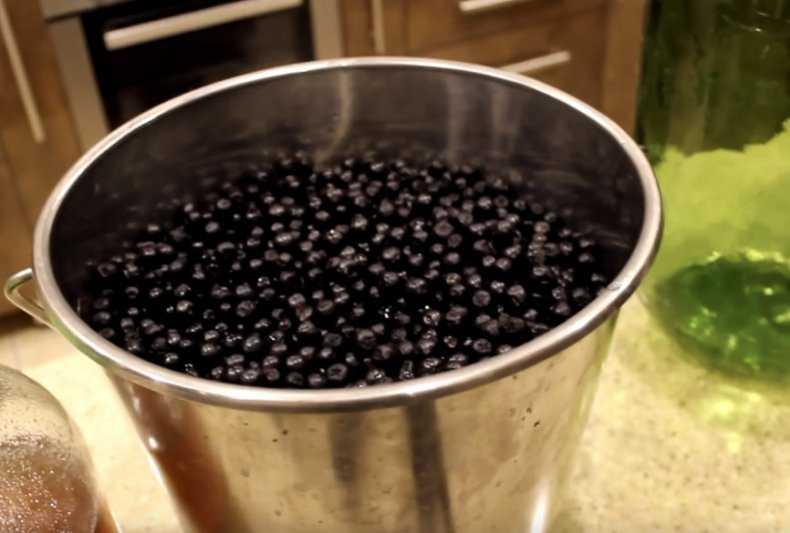 Наливка из черноплодной рябины (аронии) в домашних условиях: 6 простых рецептов