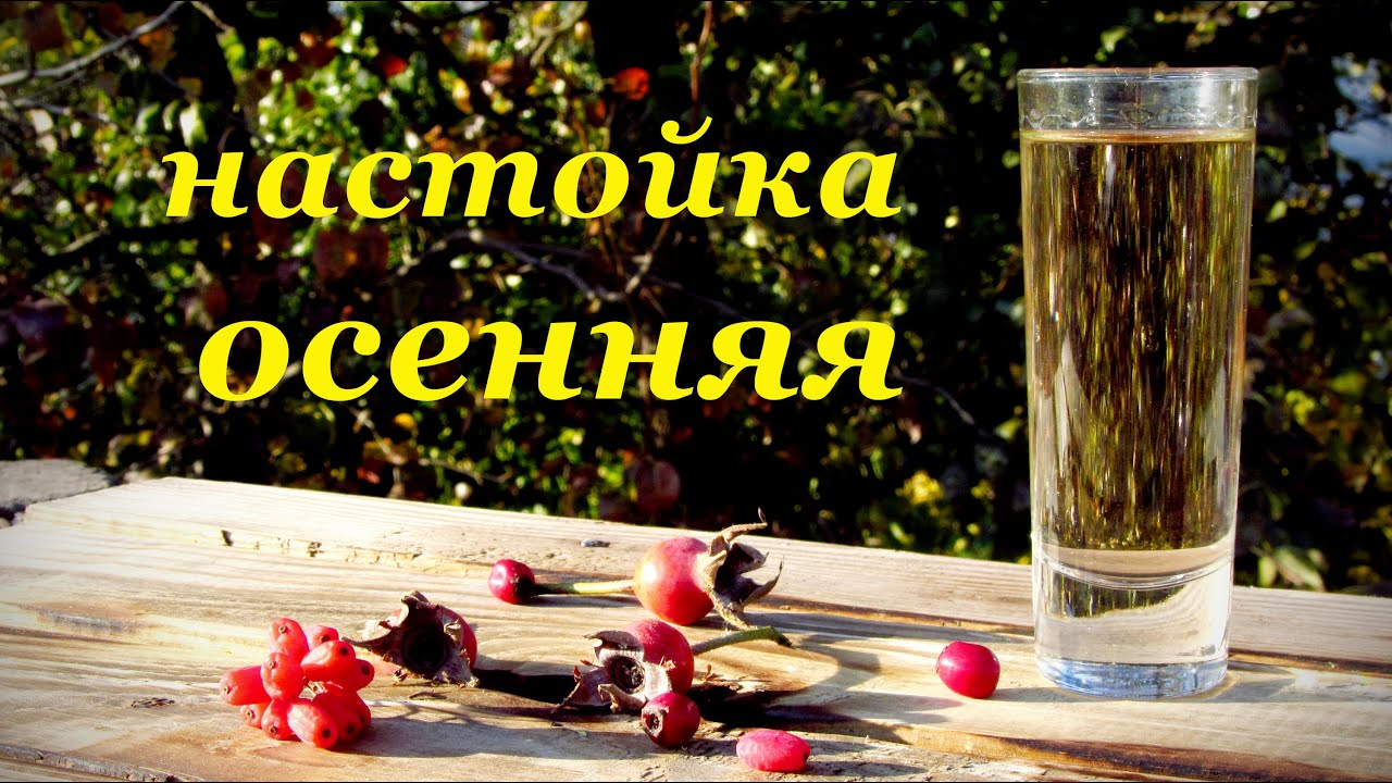 Настойки самогона на барбарисе. рецепты своими руками, применение в лечебных целях и для питья