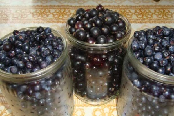 Напитки: 35 рецептов заготовок на зиму » сусеки