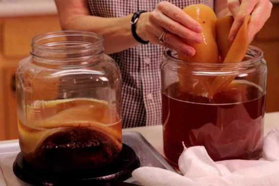 Вся правда о комбуче, или насколько полезен чайный гриб (и при лечении коронавируса)
