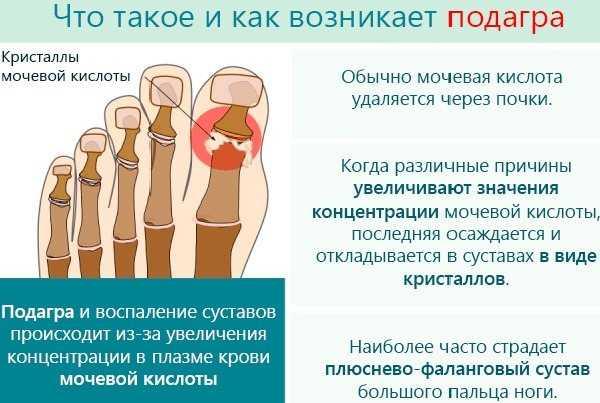Как использовать сушеный боярышник. как правильно заваривать сушеный боярышник   здоровье человека