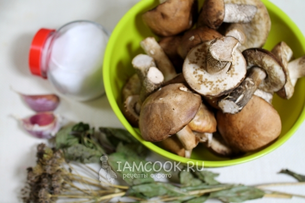 Рецепты с подберезовиком - как их правильно готовить и пошаговые рецепты приготовления