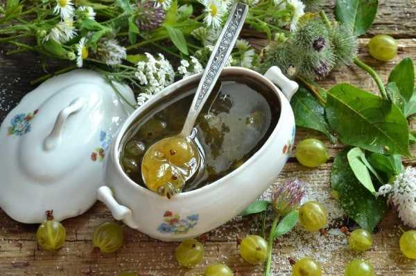Простые рецепты варенья из крыжовника на зиму — изумрудное царское, пятиминутка, с апельсином и другие