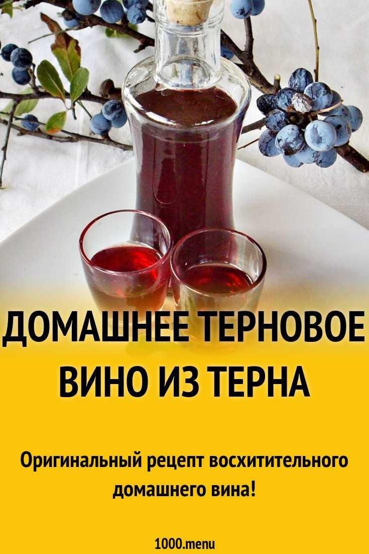 Вино из терна в домашних условиях: простой пошаговый рецепт, без дрожжей, с косточками, перчаткой, на водке, сухое, как сделать своими руками