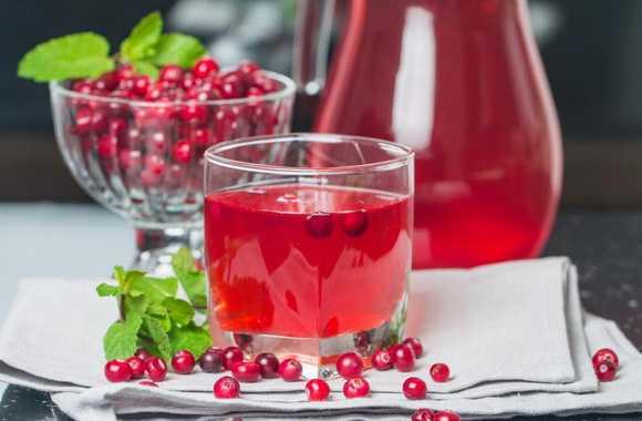 Клюквенный морс - рецепты из свежих или замороженных ягод и чем полезен напиток