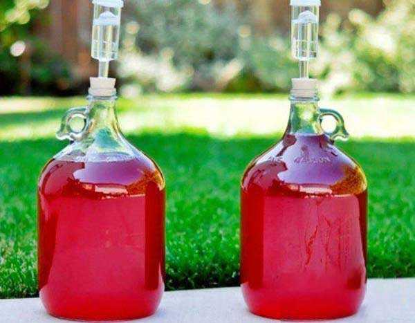 Чача из винограда в домашних условиях: лучшие рецепты