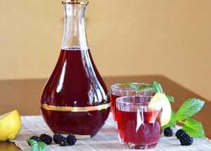 Брага из компота - простые пошаговые рецепты для приготовления в домашних условиях