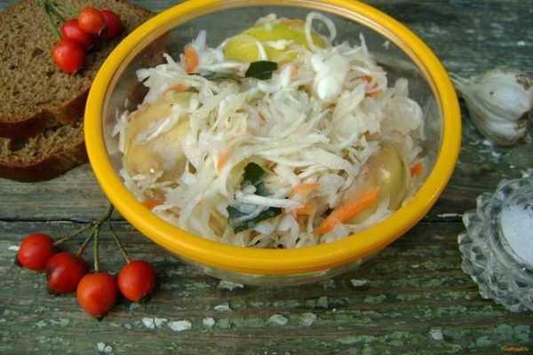 Малосольная капуста быстрого приготовления за 1 день с морковью, экспресс-метод за 2 часа, быстрая квашена капуста