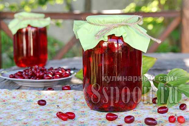 Компот из кизила и яблок на зиму: 9 простых пошаговых рецептов приготовления