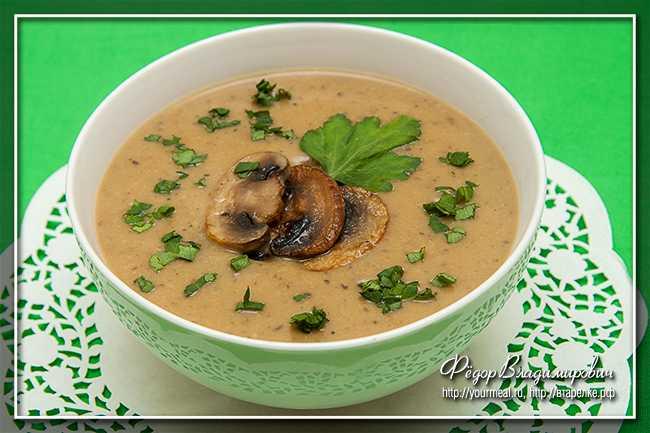 Грибной суп из сушеных грибов — самые вкусные рецепты