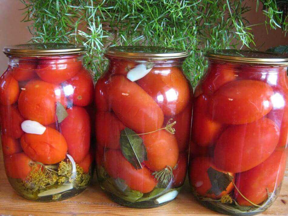 Полезные советы и описание разнообразных рецептов консервированных помидоров на зиму. Со стерилизацией, с уксусом, с лимоном, с медом и без всего вышеперечисленного.