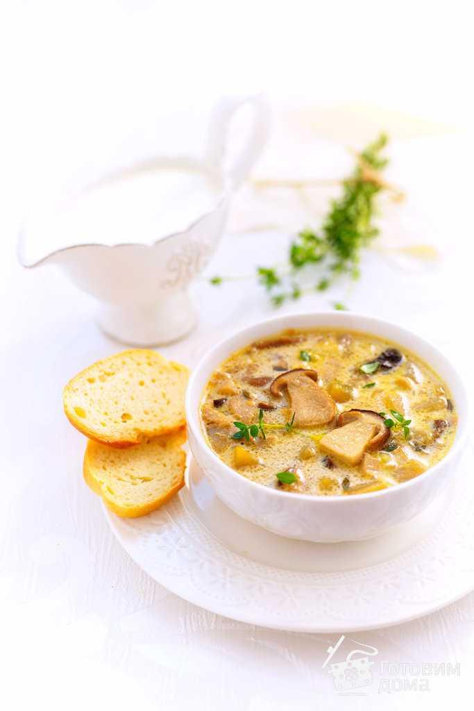 Суп-пюре из сушёных грибов
