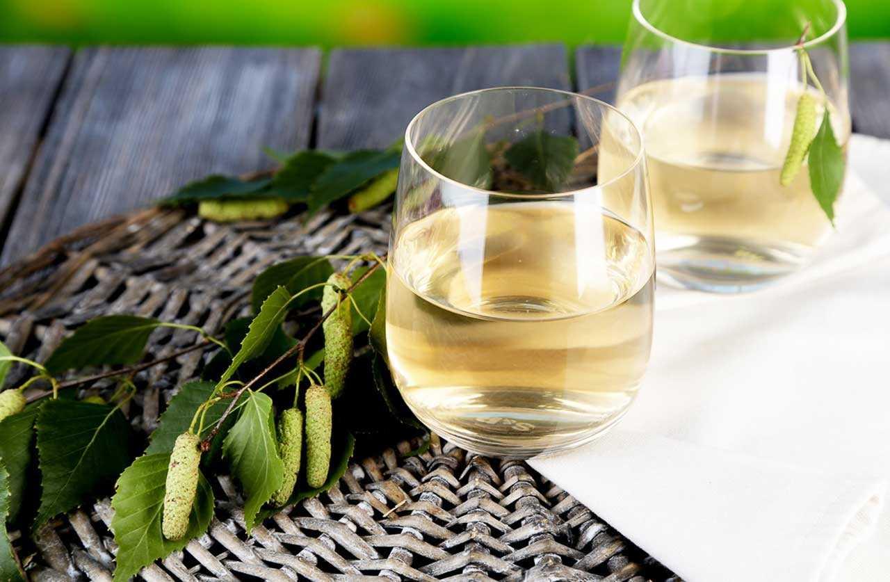 Секреты приготовления вина из березового сока