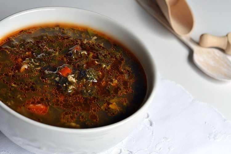 Суп из крапивы — проверенные рецепты. как правильно и вкусно приготовить суп из крапивы.