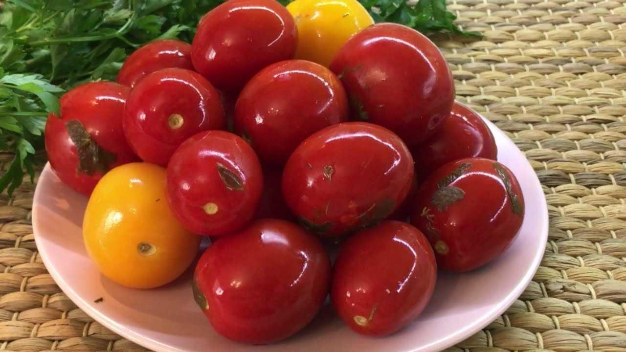 Малосольные помидоры с чесноком и зеленью – рецепты быстрого приготовления