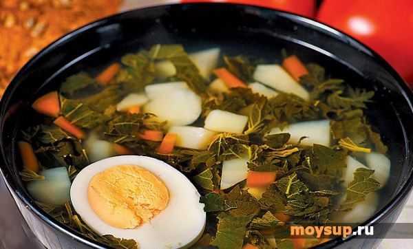 Суп из крапивы с яйцом: 6 рецептов, как варить крапивный суп