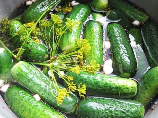 Малосольные хрустящие огурцы быстрого приготовления: рецепты за 2 часа и 15 минут
