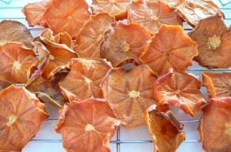 Сушёный персик: его польза и вред для здоровья человека