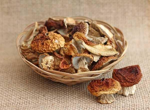 Сушка грибов (4 способа): правильно делаем сухие грибы