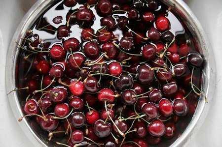 Наливка из вишни на водке: три простых рецепта и один на спирту