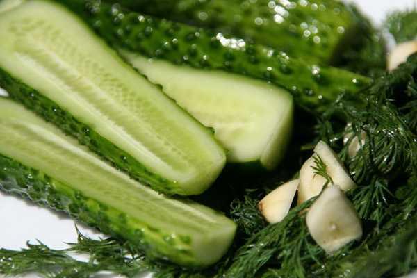 Малосольные огурцы - рецепты с фото простые и вкусные. 19 рецептов малосольных огурцов | чудо-повар