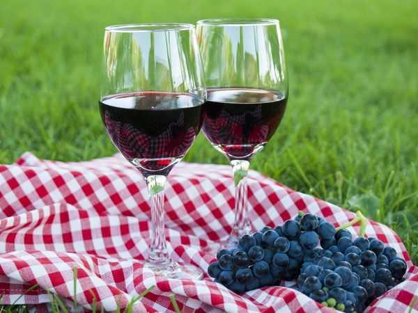 Вино из винограда изабелла в домашних условиях - рецепт по шагам
