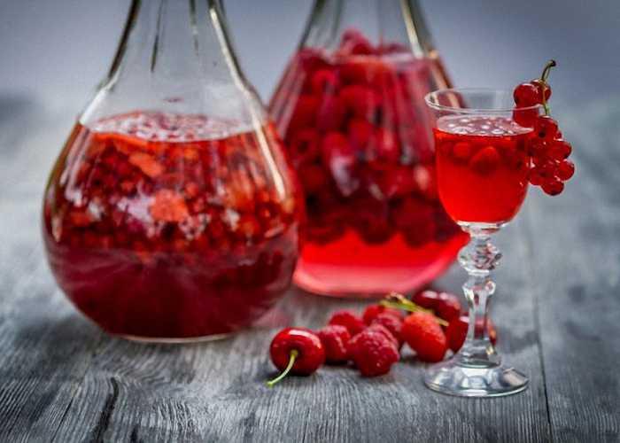 Вино из смородины: простые рецепты приготовления напитка в домашних условиях